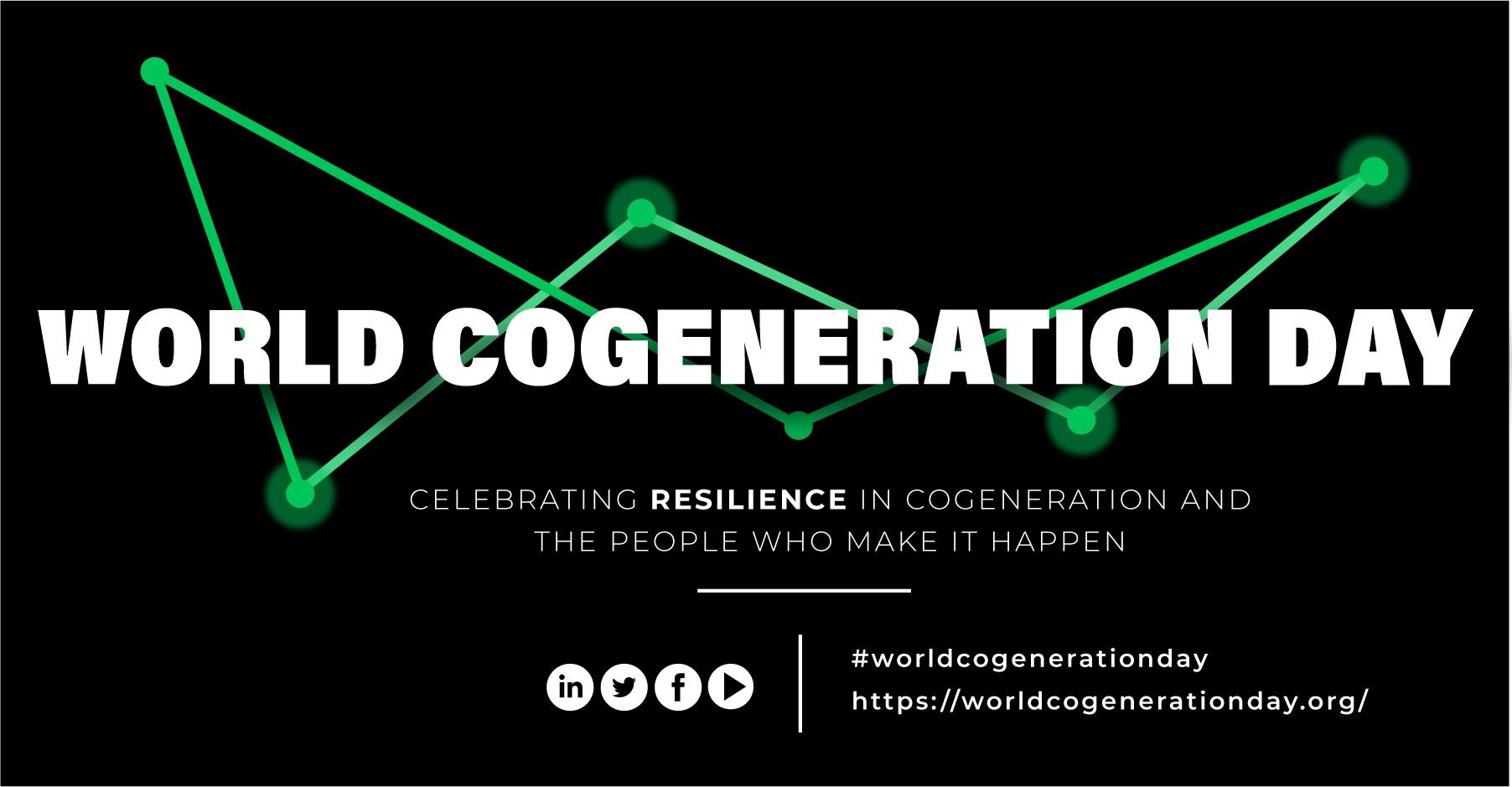 World Cogeneration Day